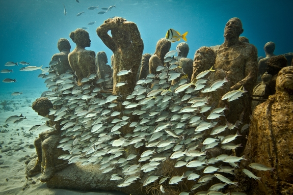 outstanding-artificial-reefs-04-evolution.jpg